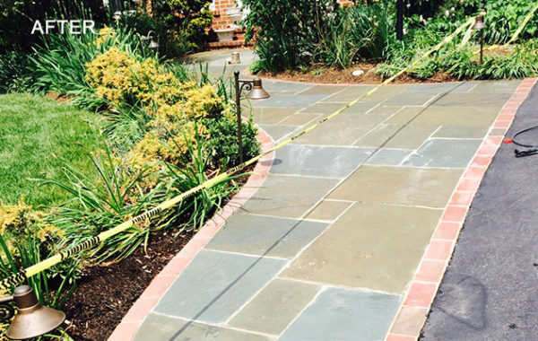 Flagstone Efflorescence Removed